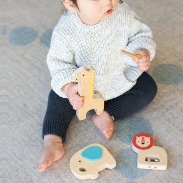 Instruments de musique animaux